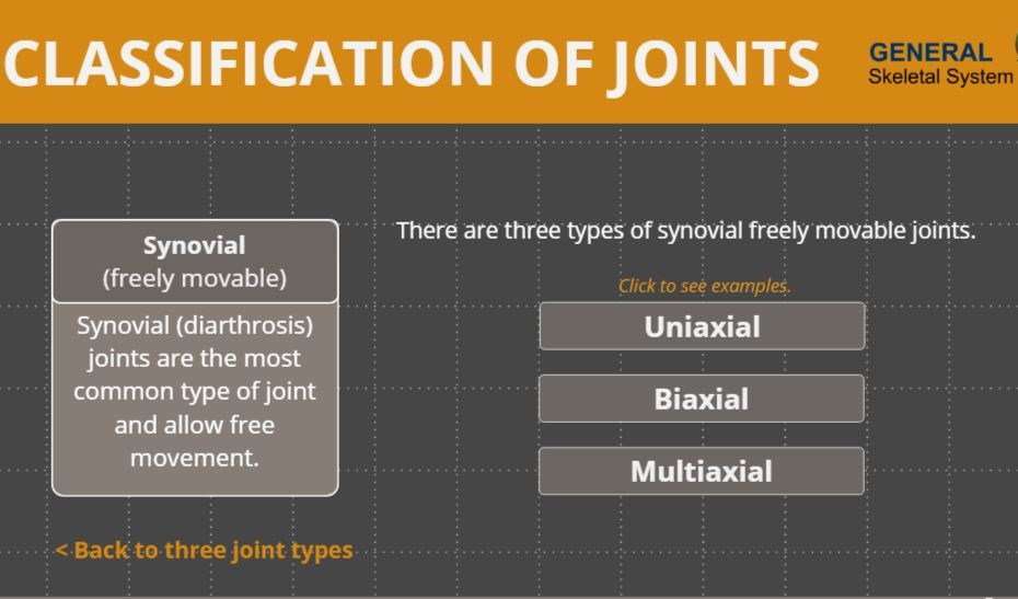 Classification Of Joints Wisc Online Oer