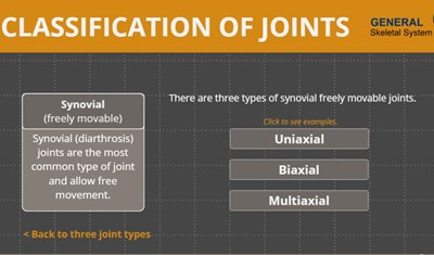Life Science Classification of Joints