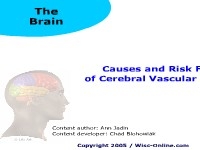Health Science Causes and Risk Factors of Cerebral Vascular Accidents