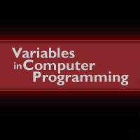 Web Development Variables in Computer Programming